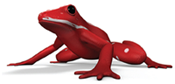Red Frog Digital ltd